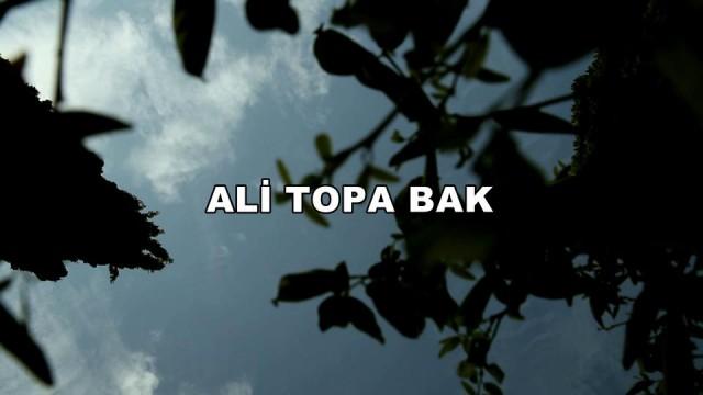 Ali Topa Bak